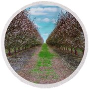 Almond Trees Of Button Willow Round Beach Towel