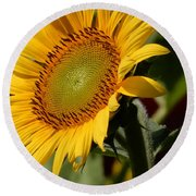 Almost Perfect Yellow Round Beach Towel