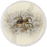 Along Came A Spider Round Beach Towel