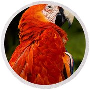 Aloof In Red Round Beach Towel