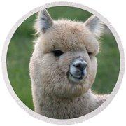 Alpaca Smile Round Beach Towel