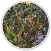 Alpine Wildflowers Hurricane Ridge 4031 Round Beach Towel