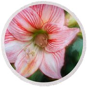 Amaryllis And Tree Frog Painted  Round Beach Towel