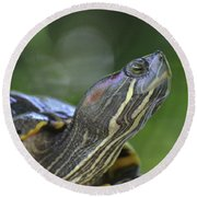 Amazing Close-up Painted Turtle Resting Round Beach Towel