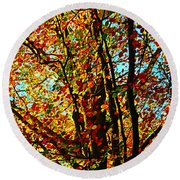 Amazing Fall Foliage Round Beach Towel