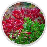 Amazing Nature Blessings Magic Colors Cherry Red Green Shrubs Plants Save  The Environment Round Beach Towel