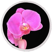 Amazing Pink Orchid With Black Background Orquidea Round Beach Towel