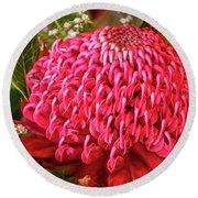 Amazing Waratah Flower Round Beach Towel
