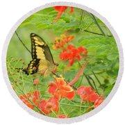 Amazonia Butterfly Round Beach Towel