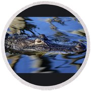 American Alligator  Round Beach Towel