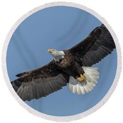 American Bald Eagle 2017-18 Round Beach Towel