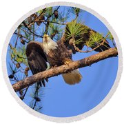 American Bald Eagle 3 Round Beach Towel