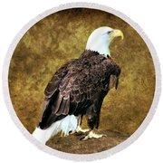 American Bald Eagle Round Beach Towel