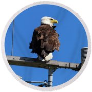 American Bald Eagle On Communication Tower Round Beach Towel
