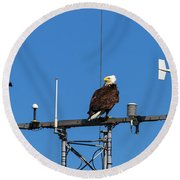 American Bald Eagle Perched On Communication Tower Round Beach Towel