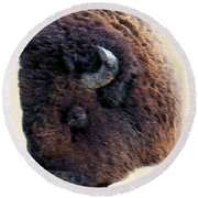 American Bison Round Beach Towel