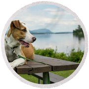 American Breed On Table Round Beach Towel