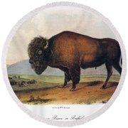 American Buffalo, 1846 Round Beach Towel