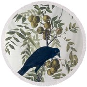 American Crow Round Beach Towel by John James Audubon