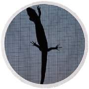 American Five-lined Skink Round Beach Towel