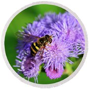 American Hoverfly Round Beach Towel