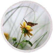 American Lady Butterfly Balancing By The Sea  Round Beach Towel