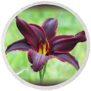 American Revolution With Vignette - Daylily Round Beach Towel