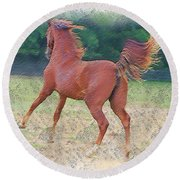 American Saddlebred Filly Round Beach Towel
