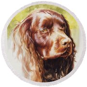 American Water Spaniel Round Beach Towel