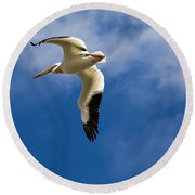 American White Pelican In Flight Round Beach Towel