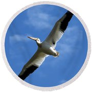 American White Pelican Wings Round Beach Towel
