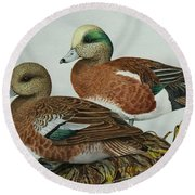 American Widgeons Round Beach Towel