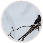 Amid The Branches Round Beach Towel