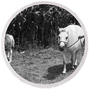Amish Girl With Her Colt Round Beach Towel