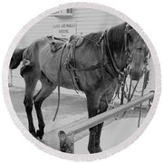 Amish Horse Round Beach Towel