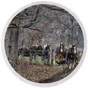 Amish Horses In Harness Round Beach Towel