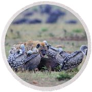 Among The Vultures 2 Round Beach Towel