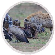 Among The Vultures 3 Round Beach Towel