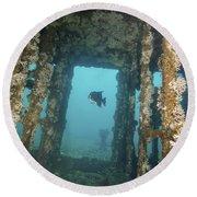 An Atlantic Spadefish Swims Amongst Round Beach Towel