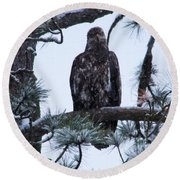 An Eagle Gazing Through Snowfall Round Beach Towel
