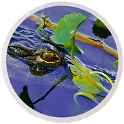 An Eye For The Camera Round Beach Towel