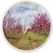 An Orchard In Blossom In The Golan Heights Round Beach Towel