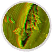 Anaglyph Of Infected Lettuce Leaf Round Beach Towel