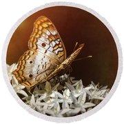 Anartia Jatrophae - White Peacock Butterfly  Round Beach Towel