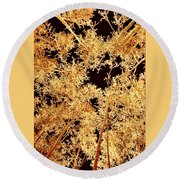 Anchorage Winter Birch Trees Round Beach Towel