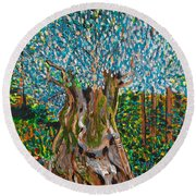 Ancient Olive Tree Round Beach Towel