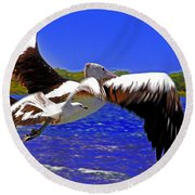 And The Seagull Follows Pelican Round Beach Towel