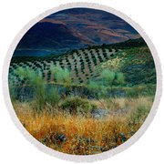 Andalucian Landscape  Round Beach Towel