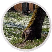 Anemone Forest Round Beach Towel