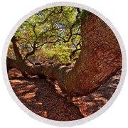 Angel Oak Tree 003 Round Beach Towel